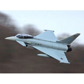 Freewing Eurofighter 90mm EDF Jet