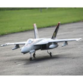Freewing F-18 90mm EDF Jet