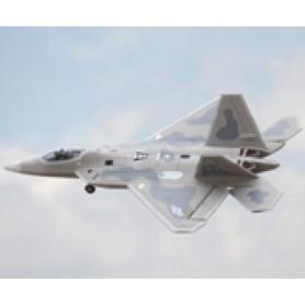 Freewing F-22 64mm EDF Jet