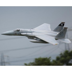 Freewing F-15C Eagle 90mm EDF Jet