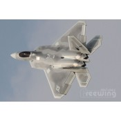 Freewing F-22 Raptor 90mm EDF Jet