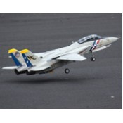 Freewing F-14 Tomcat Twin 80mm EDF Jet