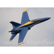 Freewing F/A-18C 90mm EDF Jet