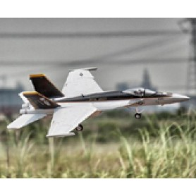 Freewing F/A-18 64mm EDF Jet