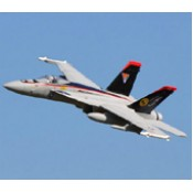Freewing F-18 V2 90mm EDF Jet